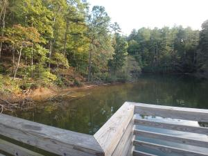 View of shore from Catawba River fishing pier