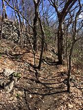 Mountain Ridge Trail Mount Jefferson State Natural Area
