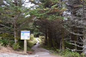 Old Mitchell trailhead at summit