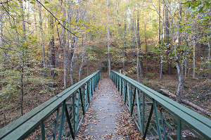 Bridge over Crabtree Creek.