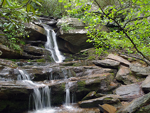 Hidden Falls at Hanging Rock State Park. Photo by D. Cook.