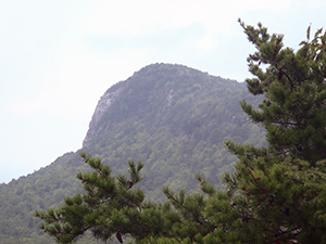 View of Moore's Knob from Huckleberry Ridge at Hanging Rock State Park. Photo by D. Cook.