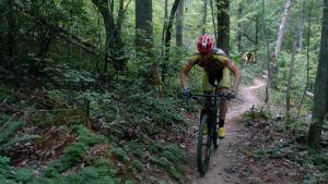 Mountain bike trails at Hanging Rock State Park. Photo by L. Arrington.