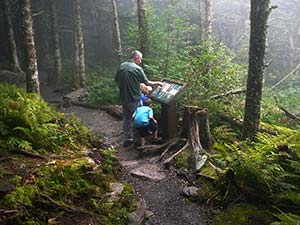 Balsam Nature Trail at Mount Mitchell State Park