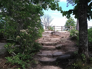 Little Pinnacle Overlook at Pilot Mountain State Park. Photo by S. Montgomery.