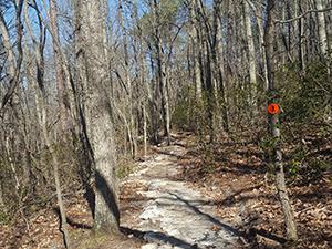 Pilot Creek Trail at Pilot Mountain State Park, Pinnacle, NC. Photo by D. Joyce.