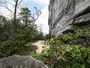Jomeokee Trail at Pilot Mountain State Park