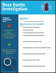 Bess Beetle Investigation student worksheet screenshot