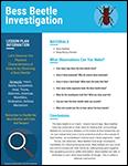 Bess Beetle Investigation lesson plan screenshot