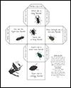 Screenshoot of Beetle Anatomy diagram labeling worksheet