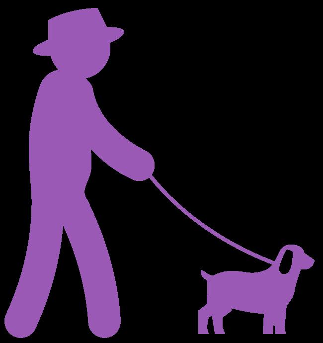 Image representing a senior man walking a dog