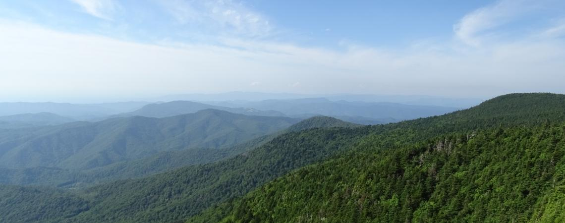 View from Roan High Knob, greenery, mountain, blue sky