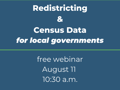 Webinar for local governments on redistricting