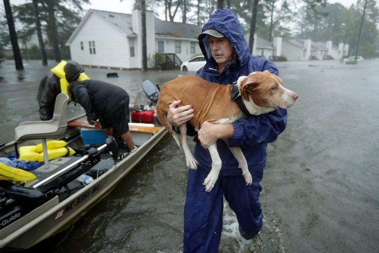 Man carries dog in flood waters next to a small boat.