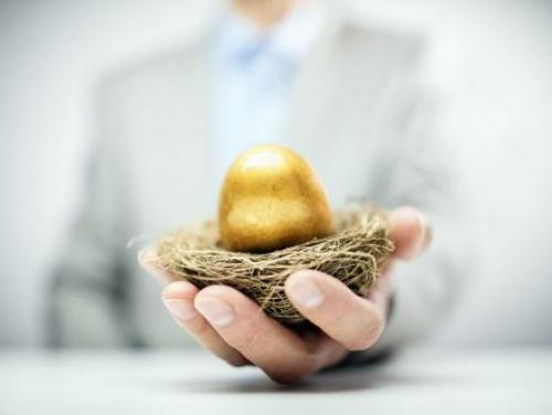 Hand holding gold egg in a nest