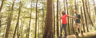 Retirees balancing on a fallen log in the woods