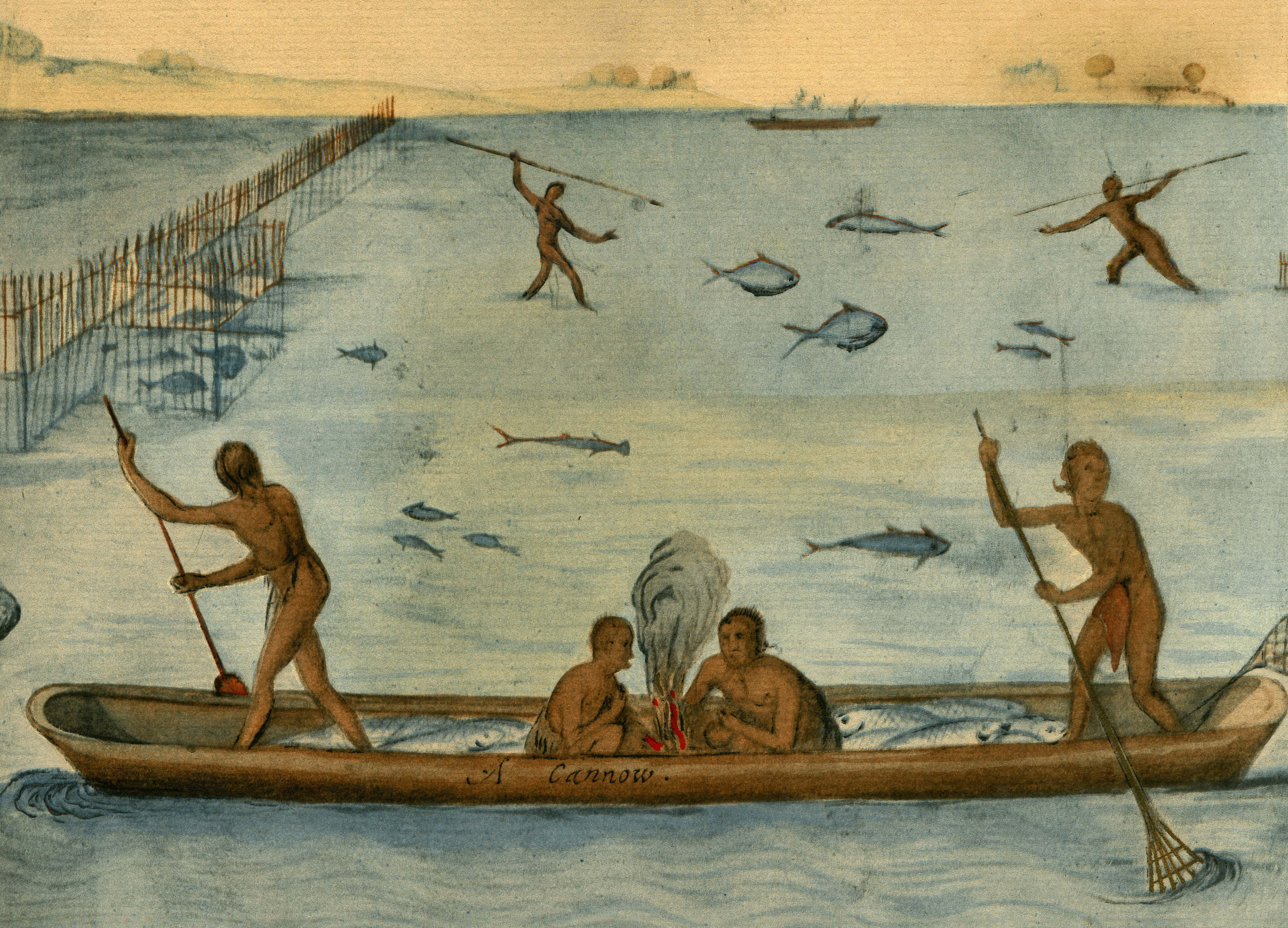 John White watercolor image of American Indians fishing John White watercolor image of American Indians fishing