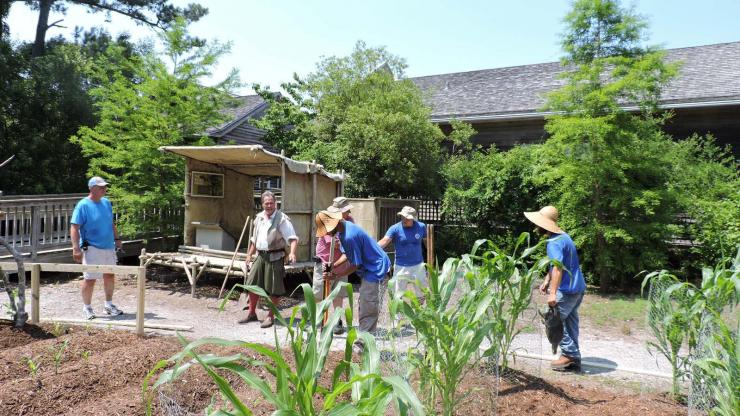 Staff working in the American Indian Town garden at Roanoke Island Festival Park