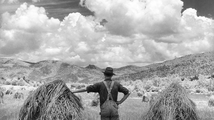 Black and white image of farmer looking out at his wheat field photographed by Hugh Morton