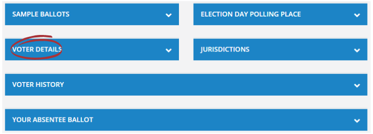 "Screenshot of a voter record with ""Voter Details"" section selected."