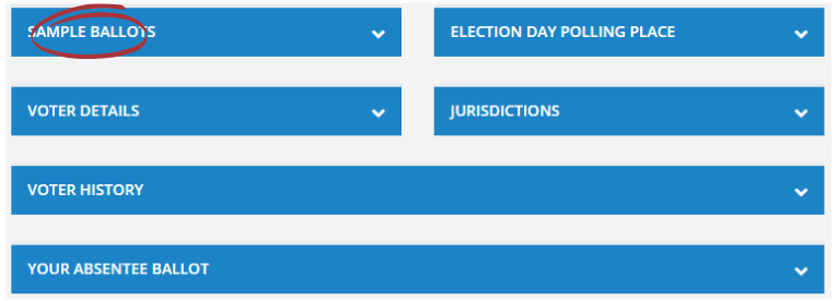 """Screenshot of a voter record with """"Sample Ballots"""" section selected."""