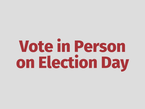 """Vote in Person on Election Day"""