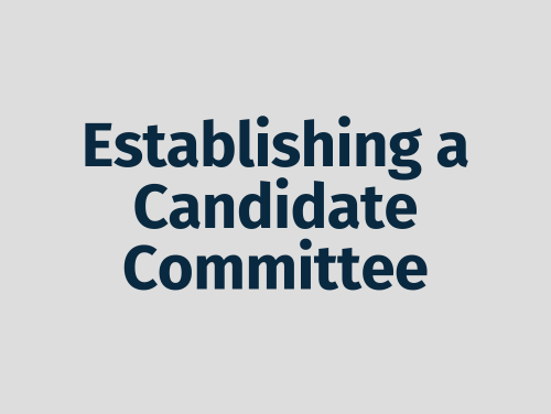 """""""Establishing a Candidate Committee"""""""