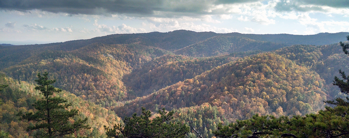 View from Chestnut Knob Overlook during the autumn at South Mountains State Park. Photo by A. Lasley.