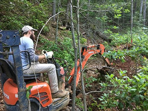 A North Carolina State Parks trails specialists clears trees to make way for a trail.